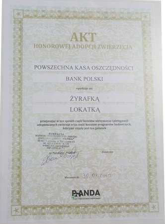 PKO Bank Polski odpowiedzialny społecznie