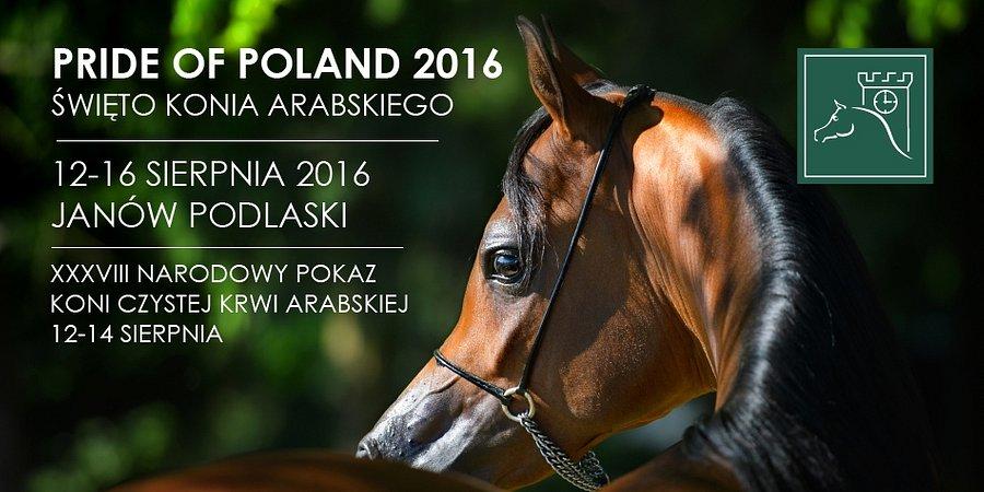 PKO Bank Polski sponsorem prestiżowej aukcji koni w Janowie Podlaskim