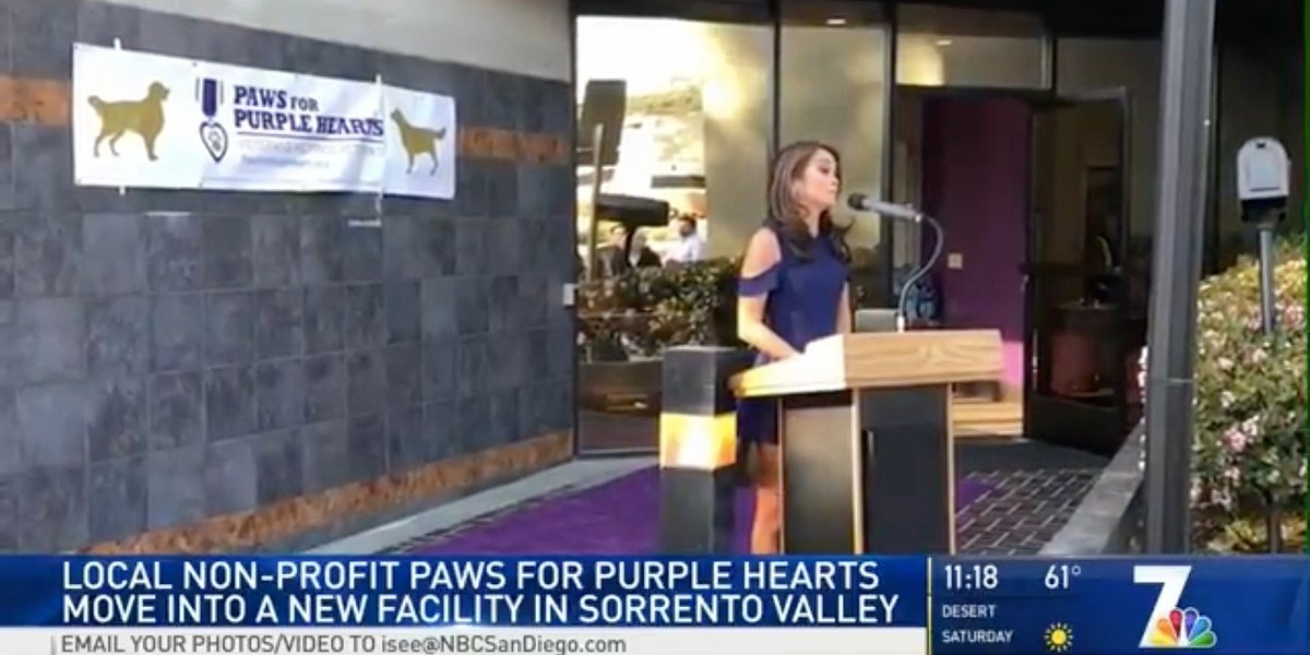 NBC 7 Evening News Features Paws for Purple Hearts Grand Opening