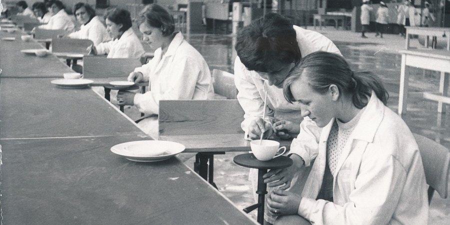 To dzięki nim, polska porcelana króluje na świecie. Lubiana S.A. podsumowuje 50 lat działalności na rynku.