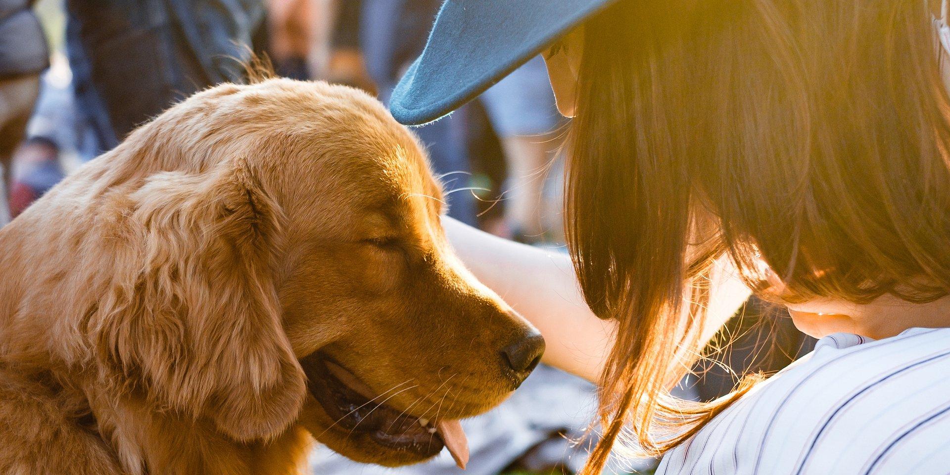 Studentom WSB zostaną anulowane kary biblioteczne w zamian za wsparcie schronisk dla zwierząt