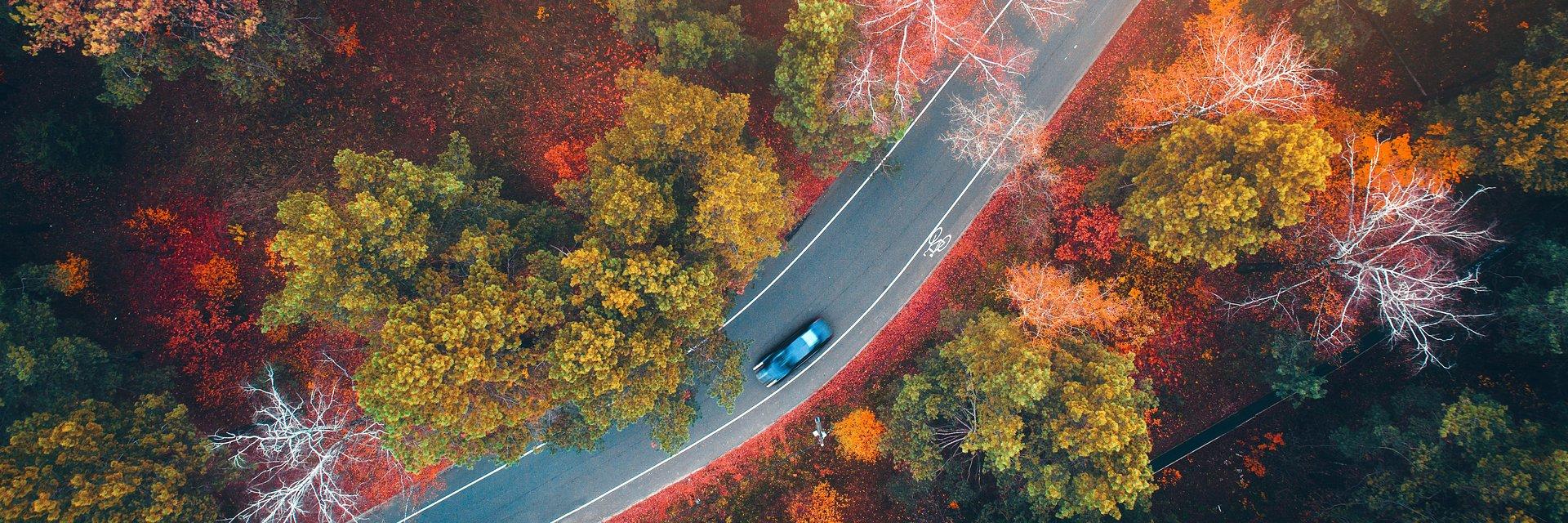 Wyjazdy na Wszystkich Świętych – na drogach więcej kontroli i wypadków