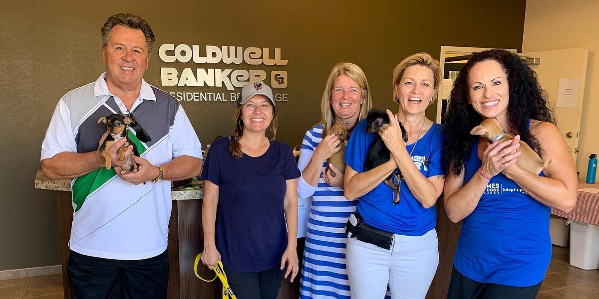 "Coldwell Banker Residential Brokerage Arizona & Local Animal Rescues Host Successful National ""Homes for Dogs"" Adoption Weekend"