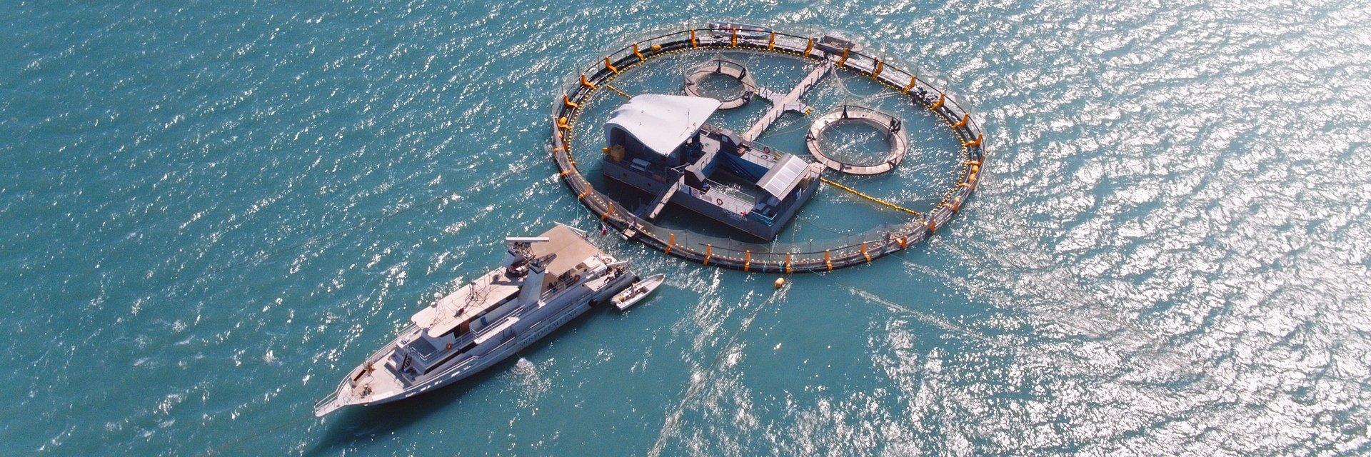 'SEA OF SHADOWS' DE LEONARDO DICAPRIO ESTREIA NO NATIONAL GEOGRAPHIC EM DEZEMBRO