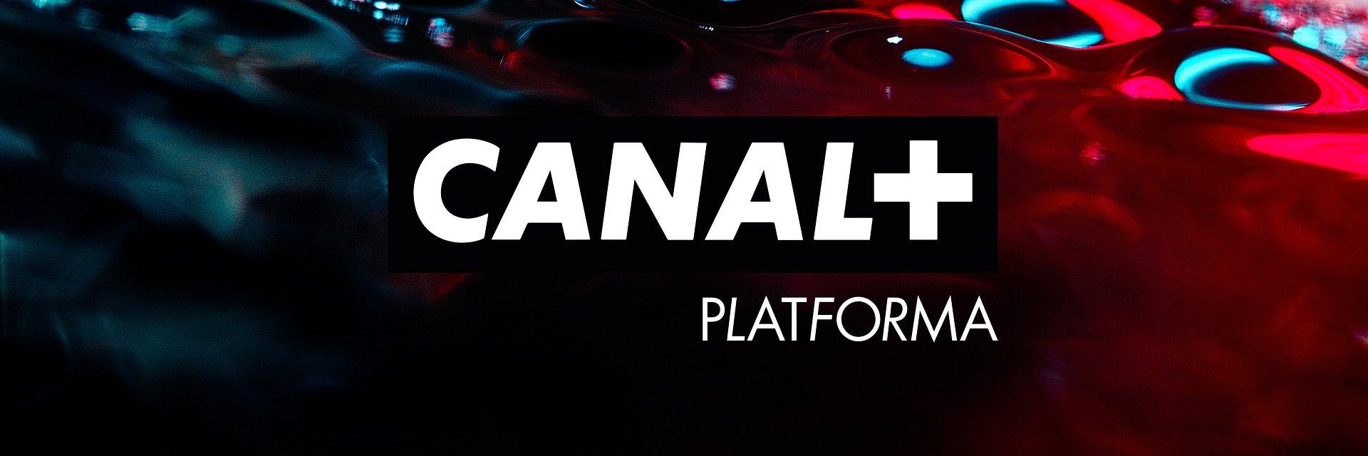Małgorzata Seck dołączy do CANAL+ na stanowisko wiceprezesa ds. programowych