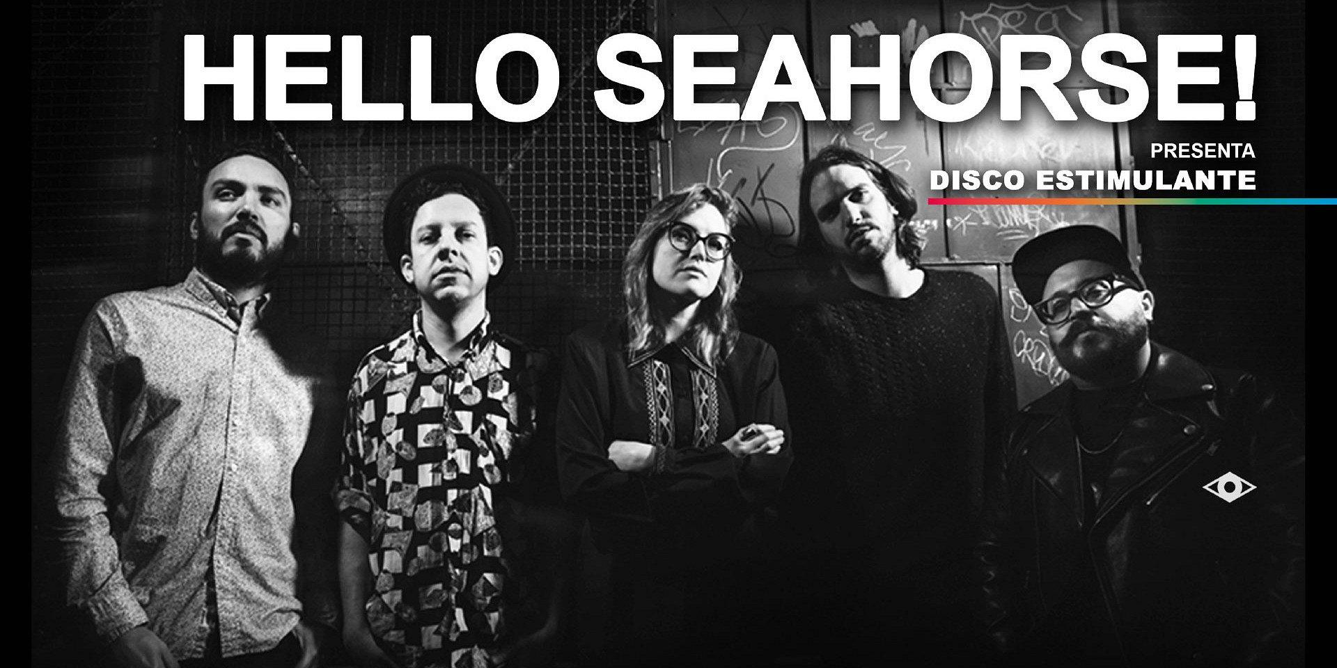 Hello Seahorse