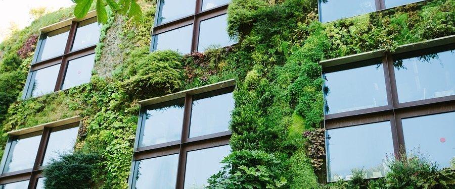 Liderzy miast rozmawiają o przygotowaniach do zmian klimatycznych