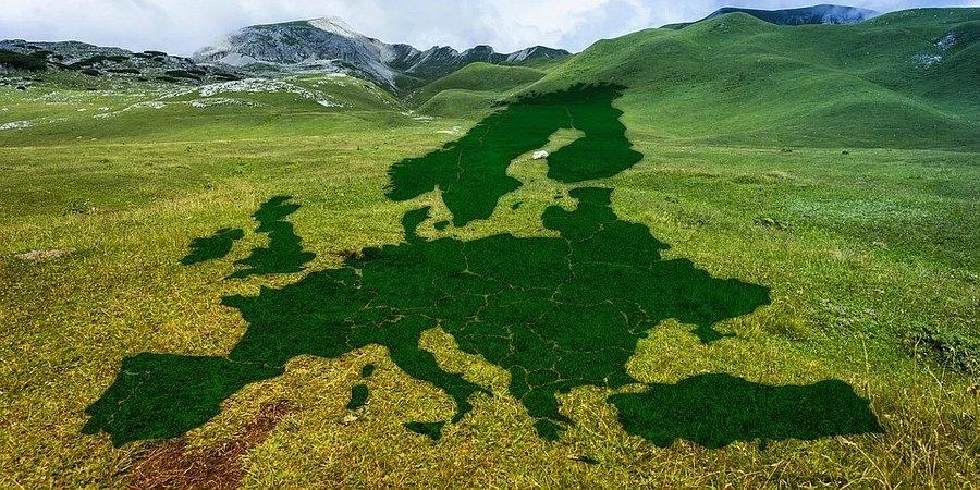 Green Deal: gra w zielone czy czerwone światło?