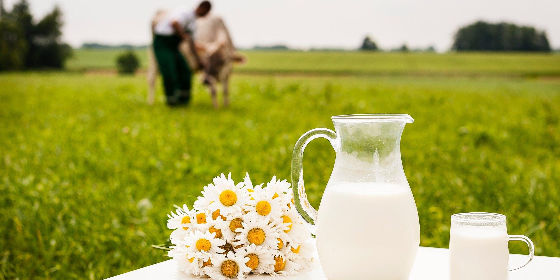 Obniżki cen mleka w skupie wydają się nieuniknione
