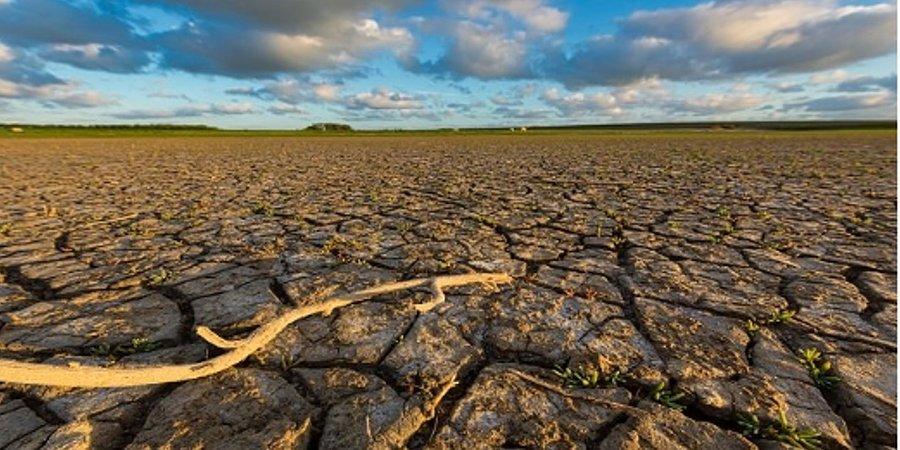 Será o COVID-19 um momento decisivo para a mudança climática?