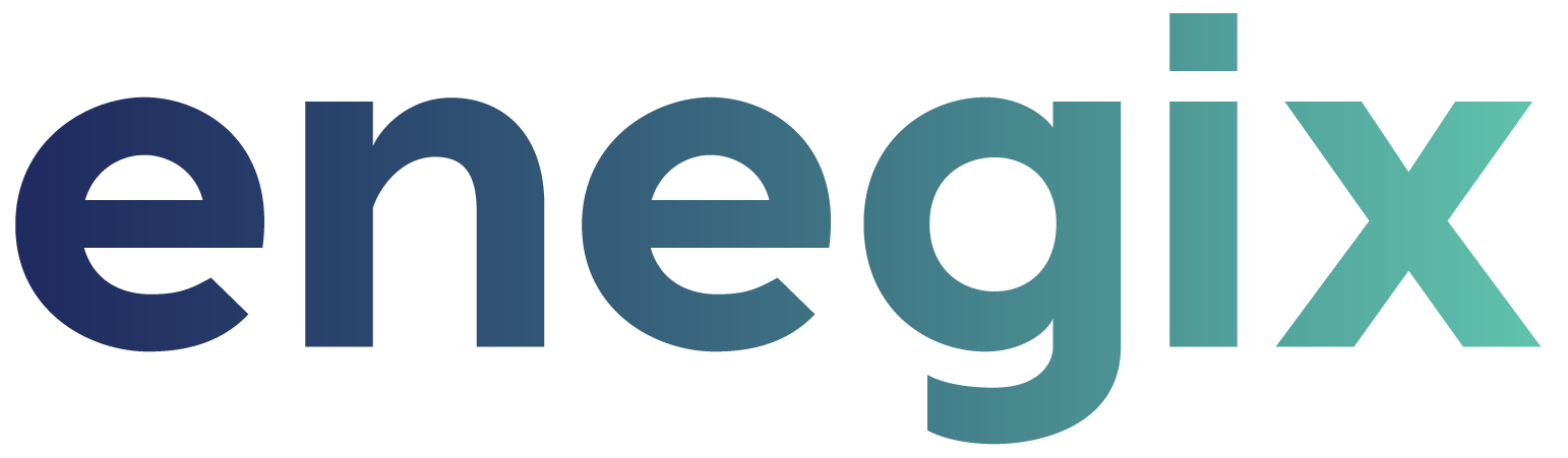 Enegix Media and Press logo