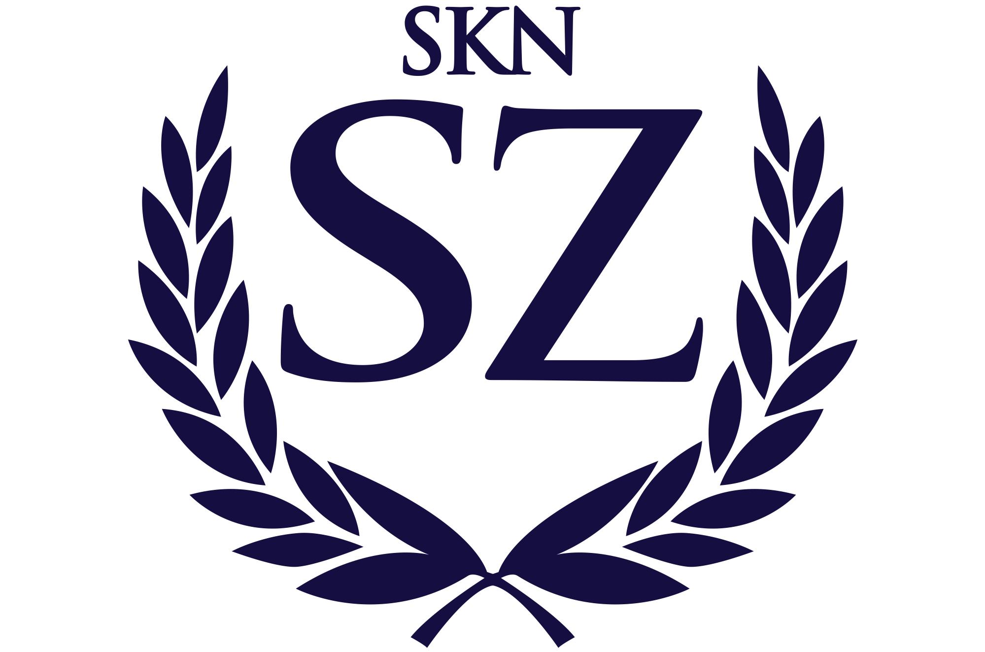 SKN Spraw Zagranicznych logo